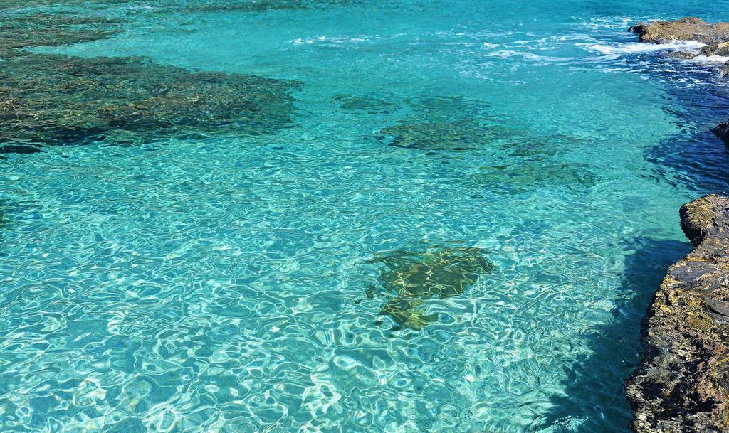 Plaka plaža - Pelion
