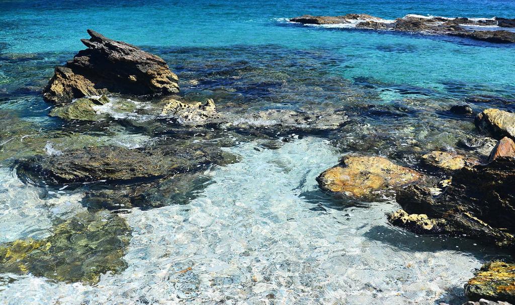 Damouchari plaža - Pelion