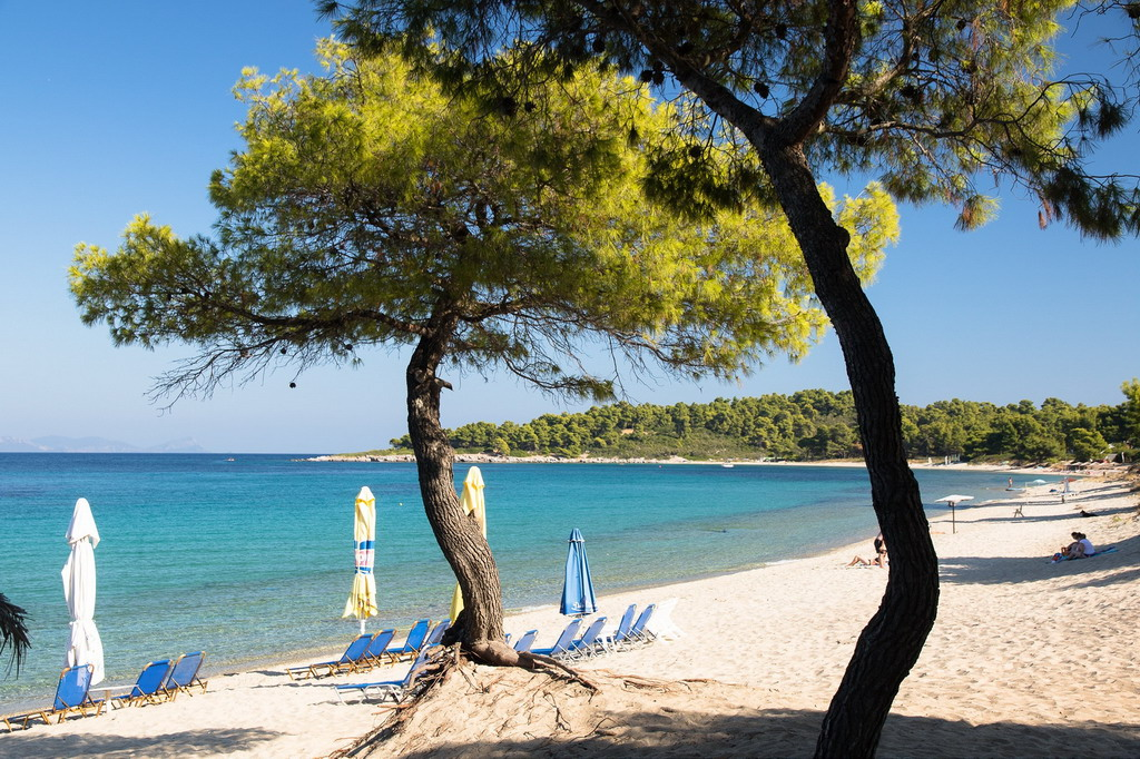 Xenia plaža - Kasandra