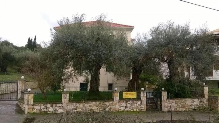 Villa Dimitra Syvota